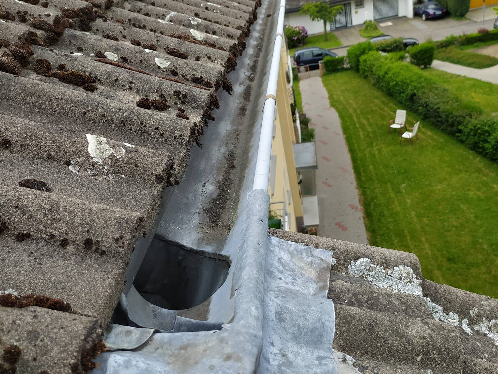 Dachrinnen und Fallrohrereinigung sowie Dachreinigung
